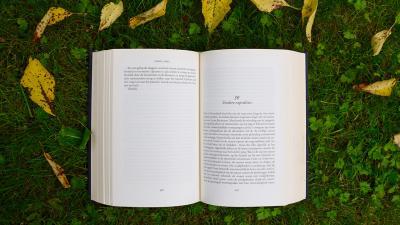 Kirja ruohikolla.